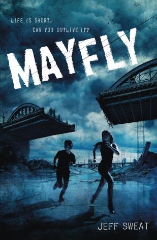 MAYFLY_LARGE